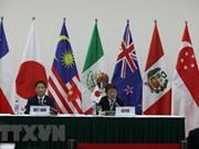 Ministro vietnamita se reúne con pares de Japón, México y Chile al margen de firma del CPTPP