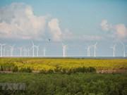 Parque eólico de Bac Lieu: impulsor del desarrollo turístico local