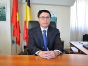 Vietnam y Bélgica consideran establecer asociación estratégica en algunas esferas