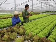Vietnam busca exportar más productos agrícolas a Sudcorea