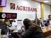 Destacan aportes de Agribank para garantizar seguridad alimentaria en Vietnam