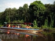 Región del delta de Mekong: destino atractivo para turistas extranjeros