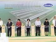 Vinamilk invertirá en granjas de vacas lecheras en Thanh Hoa