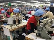 Vietnam: Sector de Confecciones disfruta de buen comienzo para alcanzar su meta del año