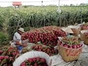 Australia asesora a Vietnam en desarrollo agrícola