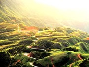 Lang Son se propone recibir dos millones de turistas en 2018