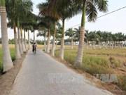 Long An invierte cerca de 500 millones de dólares en modernización rural