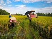 Vicepremier exhorta a crear criterios de modelos de áreas residenciales rurales