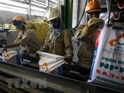Vietnam busca mejorar la seguridad e higiene en el trabajo para los jóvenes
