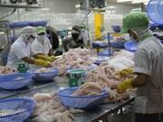 Sector de pescado Tra de Vietnam amplía exportaciones al mercado chino