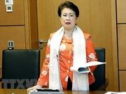 Militante vietnamita sancionada por violaciones en gestión económica