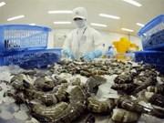 Vietnam apunta obtener 4,8 mil millones de dólares de exportaciones de camarones