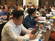 Vietnam debe esforzarse por elevar la productividad, según expertos