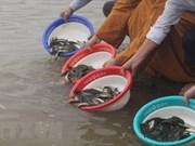 Vietnam y China por mantener sostenibilidad de recursos acuáticos en Golfo Bac Bo