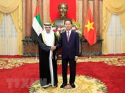 Vietnam se propone fortalecer cooperación con Emiratos Árabes Unidos, Mozambique y Sudcorea