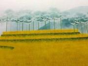Primera exposición de Nubes de Cristal en Vietnam