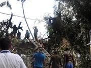 Elevan a 110 las víctimas fatales en siniestro de avión en Cuba