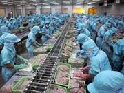 Aumentan exportaciones de pescado Tra vietnamita a China