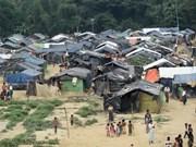 Myanmar dispuesto a recibir a musulmanes rohingyas que huyeron a Bangladesh