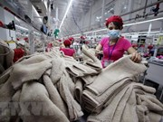 Industria de confección textil de Vietnam reporta crecimiento en mercados tradicionales