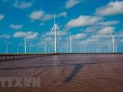 Expertos comparten experiencias sobre desarrollo de energía eólica en Vietnam