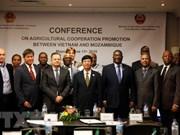 Mozambique resalta cooperación agrícola con Vietnam