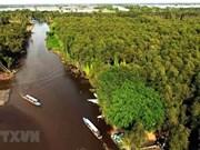 Vietnam busca alternativas para impulsar turismo en Delta del río Mekong