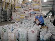 Pronostican escenario favorable para exportaciones del arroz de Vietnam