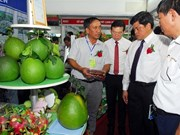Inauguran en Ciudad Ho Chi Minh feria sobre variedades de plantas y tecnologías agrícolas