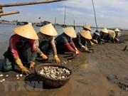 Da Nang acelera la preservación de aldeas de pescadores antiguas para disparar el turismo
