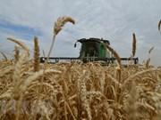 Países sudesteasiáticos analizan ventajas de la  agrosilvicultura en garantía de seguridad alimentaria