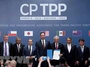 Japón avanza hacia aprobación del Acuerdo Integral y Progresivo de Asociación Transpacífico