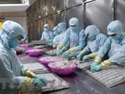 Australia condiciona importación de camarones vietnamitas