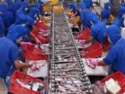 VASEP urge a productores a controlar calidad de pescado Tra exportados a China