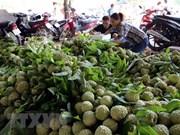 Vietnam y China robustecen comercio de productos agroacuícolas