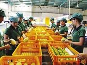 Nueva política de Corea del Sur dificulta a productos agrícolas vietnamitas