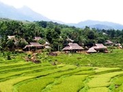 Turismo comunitario beneficia a distrito montañoso en provincia vietnamita de Thanh Hoa