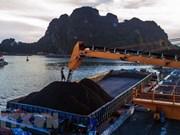 Grupo del Carbón de Vietnam se propone vender 39 millones de toneladas este año