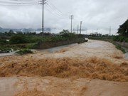 Vietnam se centra en superar consecuencias del tifón Son Tinh