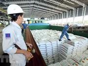 Grandes aportes al presupuesto del Complejo de Gas-Energía-Fertilizante de provincia vietnamita de Ca Mau