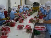 Ayudan empresas vietnamitas a penetrar en mercado estadounidense