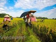 Vietnam promueve inversiones en la agricultura