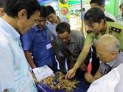 Festival promueve el gingseng Ngoc Linh de Vietnam