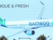 Piden revisar concesión de licencia de negocios a aerolínea vietnamita Bamboo Airways