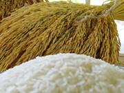 Tailandia se mantiene optimista con sus ventas de arroz al exterior