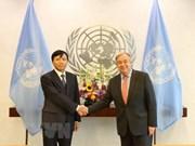 Resaltan desempeño de Vietnam en foros de las Naciones Unidas