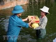 Cruz Roja de Vietnam recauda fondo a favor de familias afectadas por inundaciones