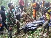Un niño sobreviviente en accidente de avioneta en Indonesia