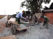 Construye Viet Nam nuevo modelo rural
