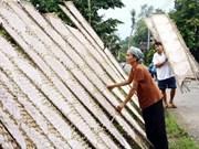 Viet Nam contribuye a la reducción de pobreza de Milenio